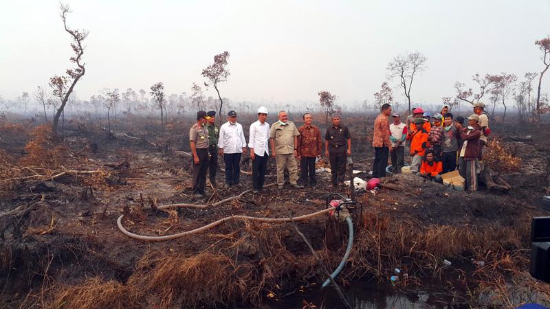 Presiden-Jokowi-Panglima-TNI-Kapolri-Gubernur-Sumsel-dan-Bupati-OKI-di-lahan-gambut-terbakar-milik-PT-Tempirai.