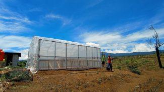 Tampak Greenhouse yang di bagun  di hutan Desa Cahaya alam Sumsel